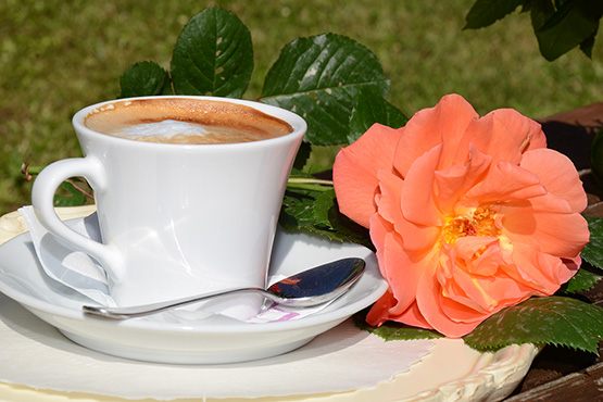Some cappuccino in the park?